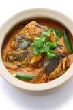 Curry capo del pesce Fotografia Stock