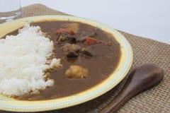 Curry casalingo del manzo con manzo tagliato Fotografia Stock