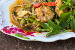 Curry catfish on rust. Royalty Free Stock Images