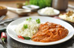 Curry Royalty Free Stock Photography