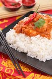 Curry chicken and rice Royalty Free Stock Photos