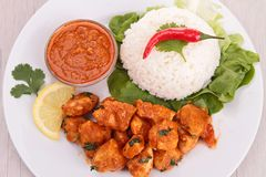 Curry chicken and rice Royalty Free Stock Images
