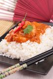 Curry chicken and rice Stock Photography