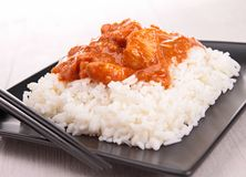 Curry chicken and rice Royalty Free Stock Photography