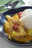 Curry Chicken rice Stock Images