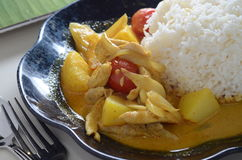 Curry Chicken rice Stock Photography