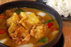 Curry chicken stew Royalty Free Stock Photography