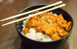 Curry cinese Fotografie Stock