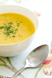 Curry Coconut Butternut Squash Soup Stock Photography