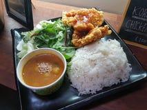 Curry con el pollo frito imagenes de archivo