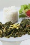 Curry de la espinaca india imágenes de archivo libres de regalías