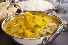 Curry de los pescados Fotografía de archivo libre de regalías
