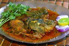 Curry de los pescados Foto de archivo libre de regalías