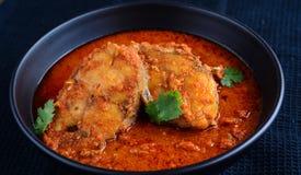 Curry de los pescados imagen de archivo