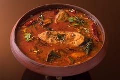 Curry de los pescados imagen de archivo libre de regalías