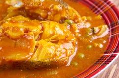 Curry de los pescados de Kerala Imagenes de archivo