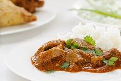 Curry de Madras del cordero Fotografía de archivo