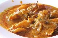 Curry del calamaro Fotografie Stock Libere da Diritti