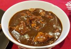 Curry del giapponese della carne di maiale Immagini Stock