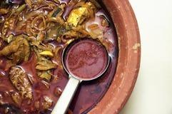 Curry del pesce Immagini Stock