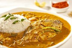 Curry del pesce con riso dall'India Fotografia Stock Libera da Diritti