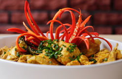 Curry del pollo Imágenes de archivo libres de regalías