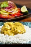 Curry del pollo Fotografia Stock Libera da Diritti