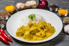 Curry del pollo con riso su un fondo scuro Fotografia Stock Libera da Diritti