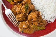 Curry del pollo de Chettinadu con el veg y el arroz Imagenes de archivo