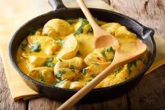 Curry del pollo en una salsa del primer de la leche de coco horizontal imágenes de archivo libres de regalías