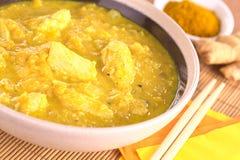 Curry del Pollo-Mango Foto de archivo libre de regalías