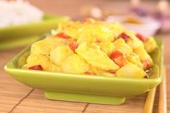 Curry del Pollo-Mango Immagini Stock Libere da Diritti