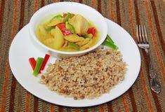 Curry del pollo y arroz moreno Imágenes de archivo libres de regalías