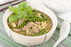 Curry della giungla (PA di Kaeng) Fotografie Stock