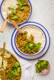 Curry della lenticchia con riso, cucina indiana, tarka dal, backgro bianco Fotografia Stock Libera da Diritti