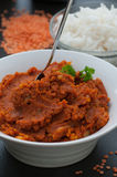 Curry della lenticchia rossa Fotografia Stock Libera da Diritti