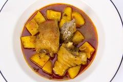 Curry di mussaman del pollo fotografia stock