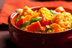 Curry di verdure fotografia stock libera da diritti