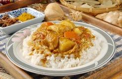 Curry e riso del pollo Fotografia Stock