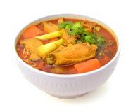 Curry'ego kluski Fotografia Royalty Free
