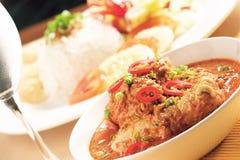 Curry'ego kurczak Zdjęcia Stock
