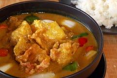 Curry'ego kurczaka gulasz Fotografia Royalty Free