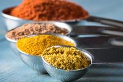 Curry'ego proszek Zdjęcia Stock