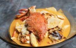 Curry'ego tajlandzki czerwony krab Zdjęcie Royalty Free