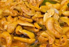 curry för cashewmutter royaltyfri fotografi