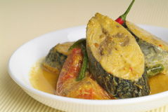 Curry fish Royalty Free Stock Photos