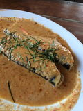 Curry Fried Fish Royaltyfria Foton