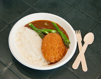 Curry fried pork with rice Royalty Free Stock Images