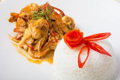 Curry fried shrimps and cooked rice Royalty Free Stock Photography