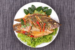 Curry-fried Tilapia fish with spicy topping. Stock Image